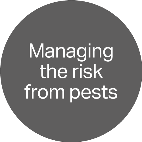 Managing the risk from pests